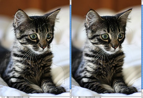 Photoshop Quick Tips #3 - Enhancing Photos with High Pass Filter